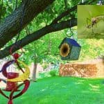Best Natural Mosquito Repellent For Yard You Can Make Yourself