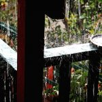 How To Keep Rain From Blowing In On Porch
